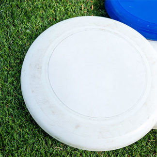 ultimate frisbee provo